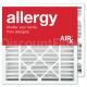 Replacement Goodman / Amana / Five Seasons Air Cleaner Filter 20x20