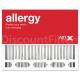 Replacement Goodman / Amana / Five Seasons Air Cleaner Filter 20x25, Single Filter